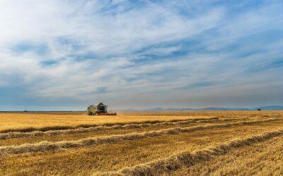 Más de 1.300 agricultores acudirán a las VII Jornadas GENVCE de la mano de Grano Sostenible